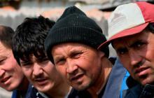 Мигрантам из стран, с которыми у России нет визового режима, больше не потребуется разрешение на работу